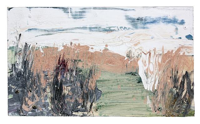 distant landscape (marsh)