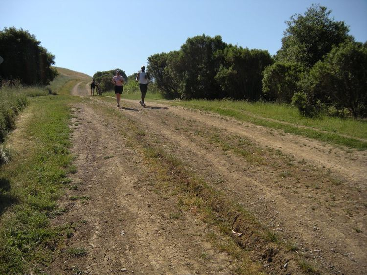 Running training at the Wildcat Canyon Regional Park trail in California