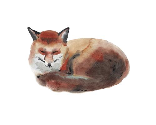 free printable watercolour fox print