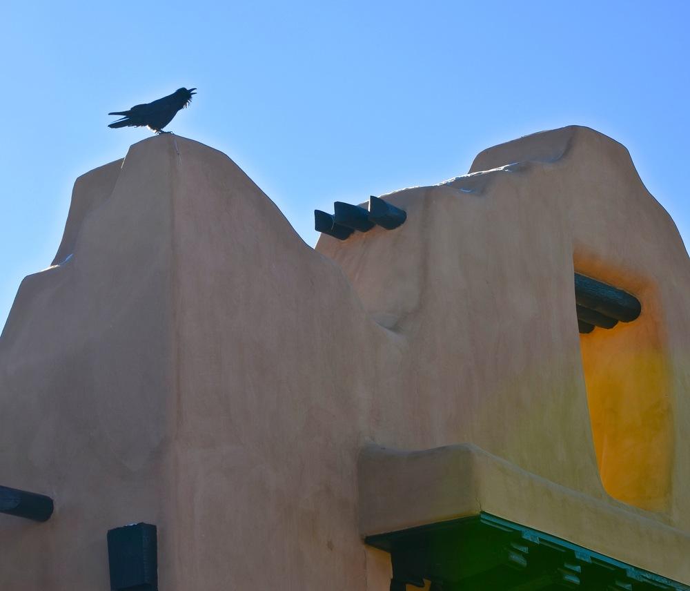 Pueblo Crow