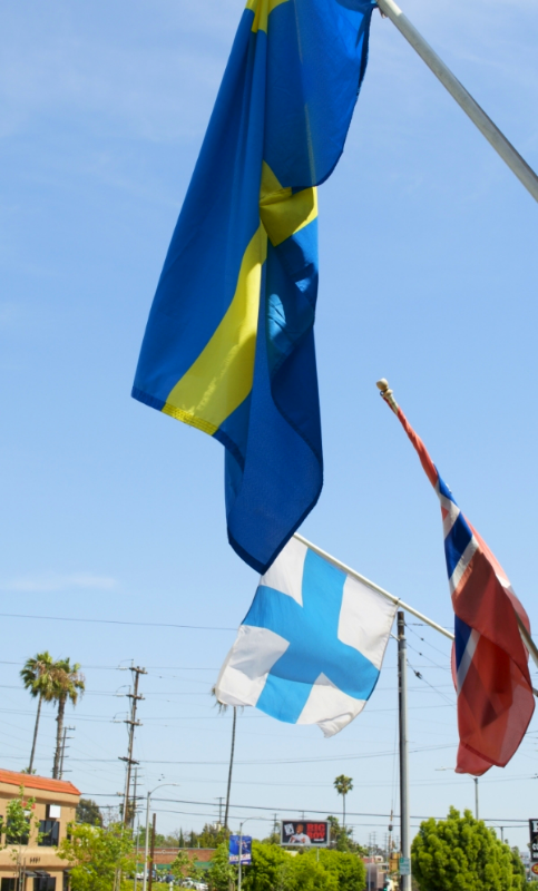 Swedish flag (blue & yellow), Finnish flag (blue & white), Norwegian flag (blue and red)