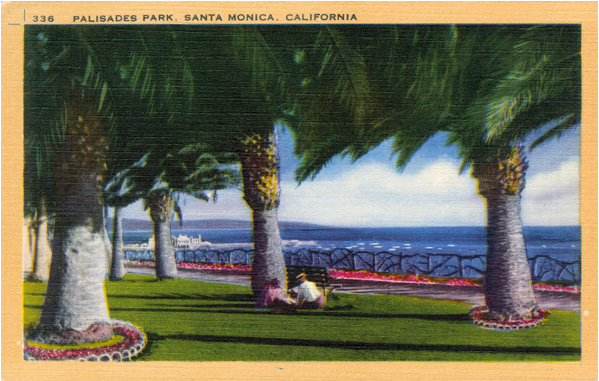 "From KCET.org ""A Brief History of Palm Trees in Southern California"" Courtesy of the Werner Von Boltenstern Postcard Collection, Department of Archives and Special Collections, Loyola Marymount University Library."