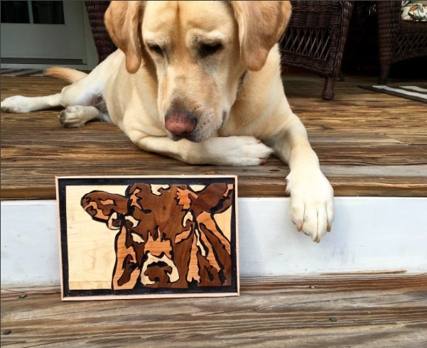 Cow wall art, Charlie's own design - Courtesy @youngwoodworker