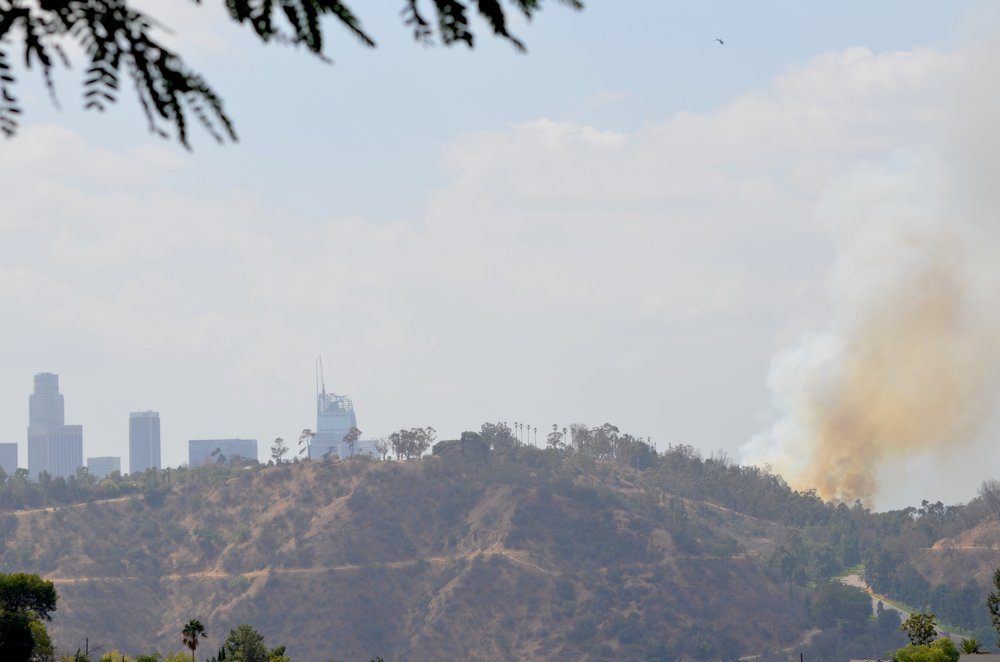 Elysian Park Fire - 9/22/16 - Photo Credit: Brad Waters, ProvinceJournal.com