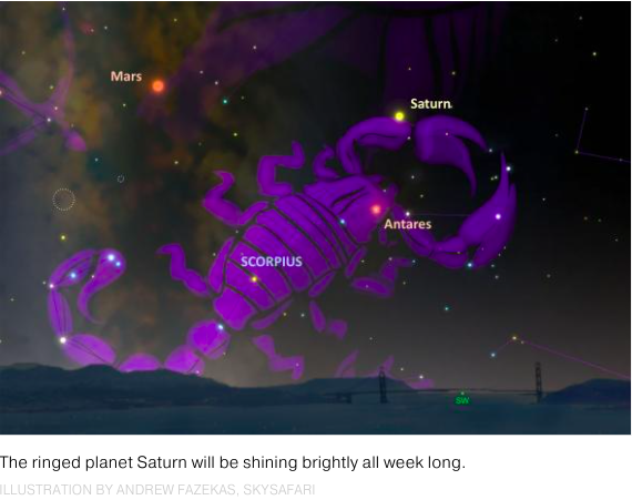 "Speaking of scorpions, look 20 degrees above the southwest evening horizon to view Saturn in the constellation Scorpius. Antares, its brightest star, ""has an orange-red hue that will seem to smolder next to Saturn's creamy yellow color."" Source, National Geographic:    http://news.nationalgeographic.com/2016/09/autumn-equinox-explained-start-fall-spring-sun-earth-science/"