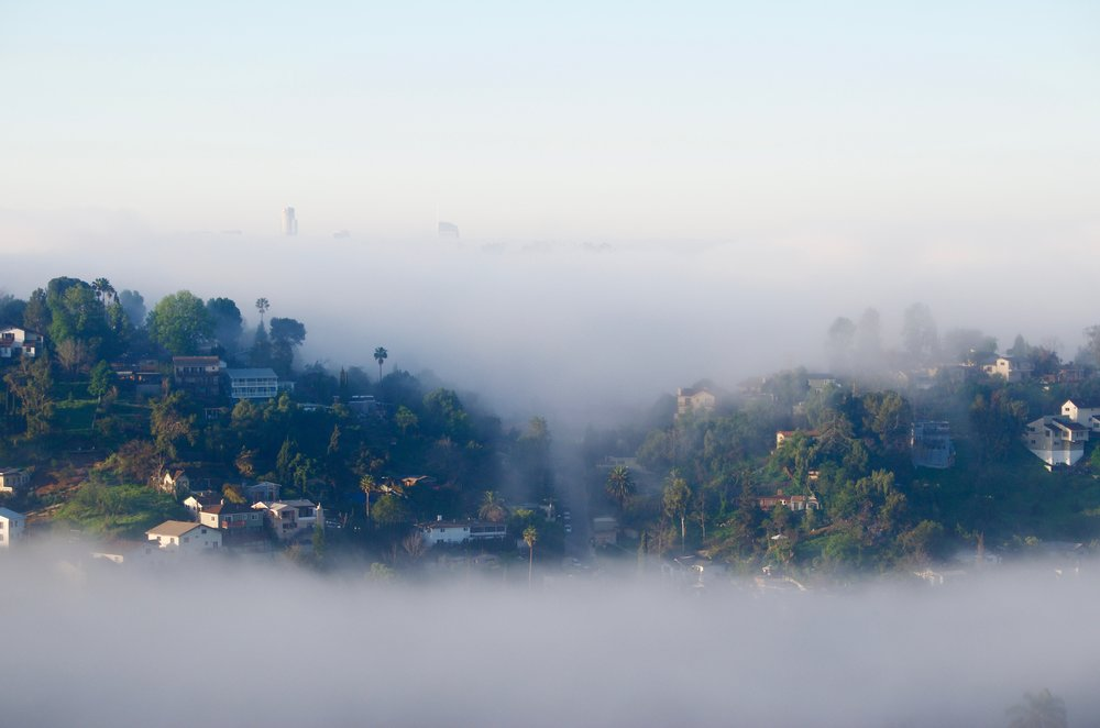 Cool nights and hot days bring morning marine fog to our valley, obscuring the skyscrapers of downtown L.A.