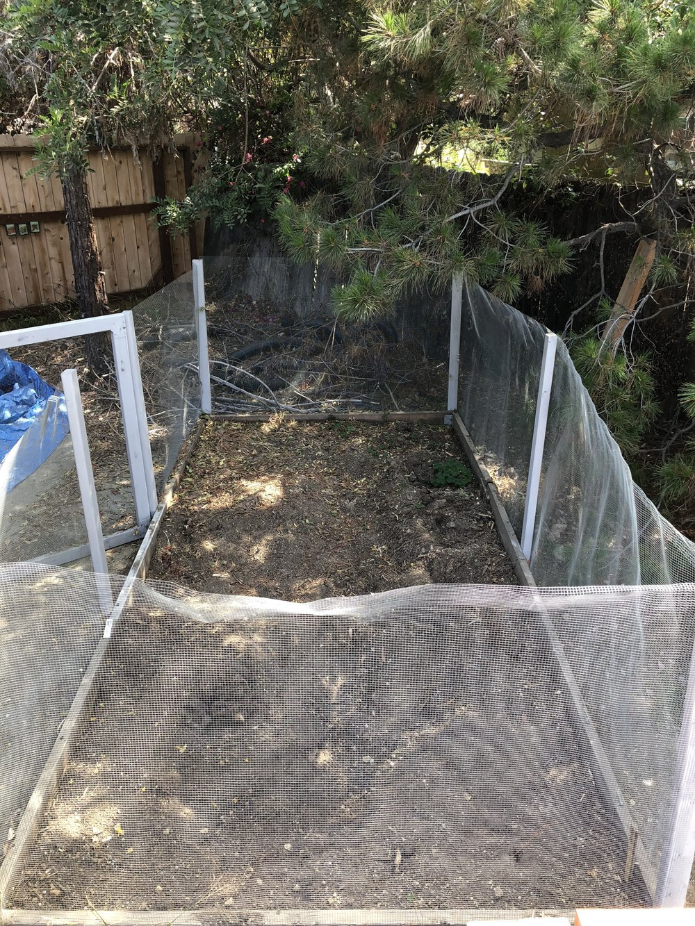 This fenced bed is destined for demolition and its soil will be transferred to containers. The plot will become a garden shed.