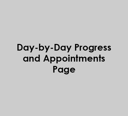 Day-by-day progress and appointments