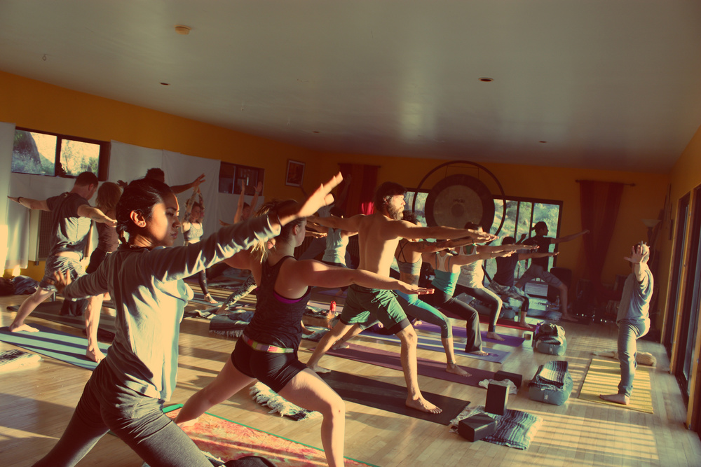 California Yoga Teacher Training, by Shivakali Yoga, a  Los Angeles-based Yoga Teacher Training and Yoga Certification School that holds Yoga Retreats and Workshops.