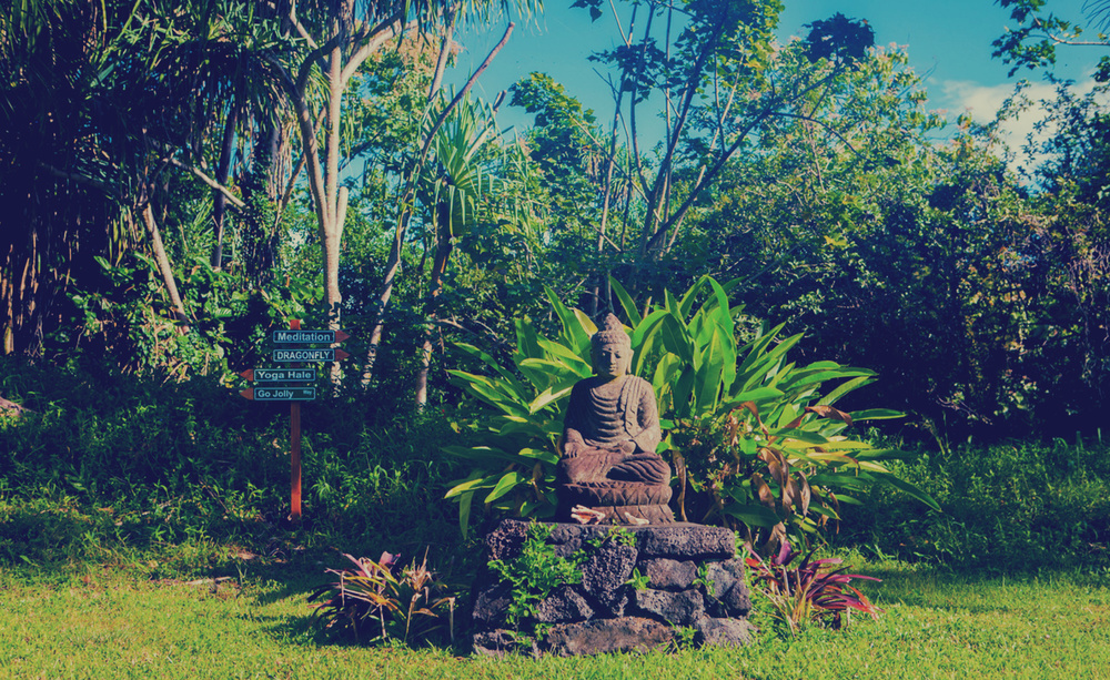 Yoga Teacher Training - Hawaii Retreat, by Shivakali Yoga, a  Los Angeles-based Yoga Teacher Training and Yoga Certification School that holds Yoga Retreats and Workshops.