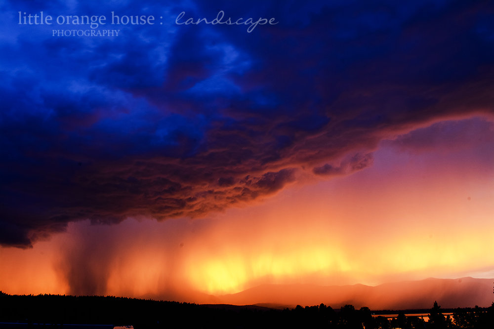 storm fb 2.jpg
