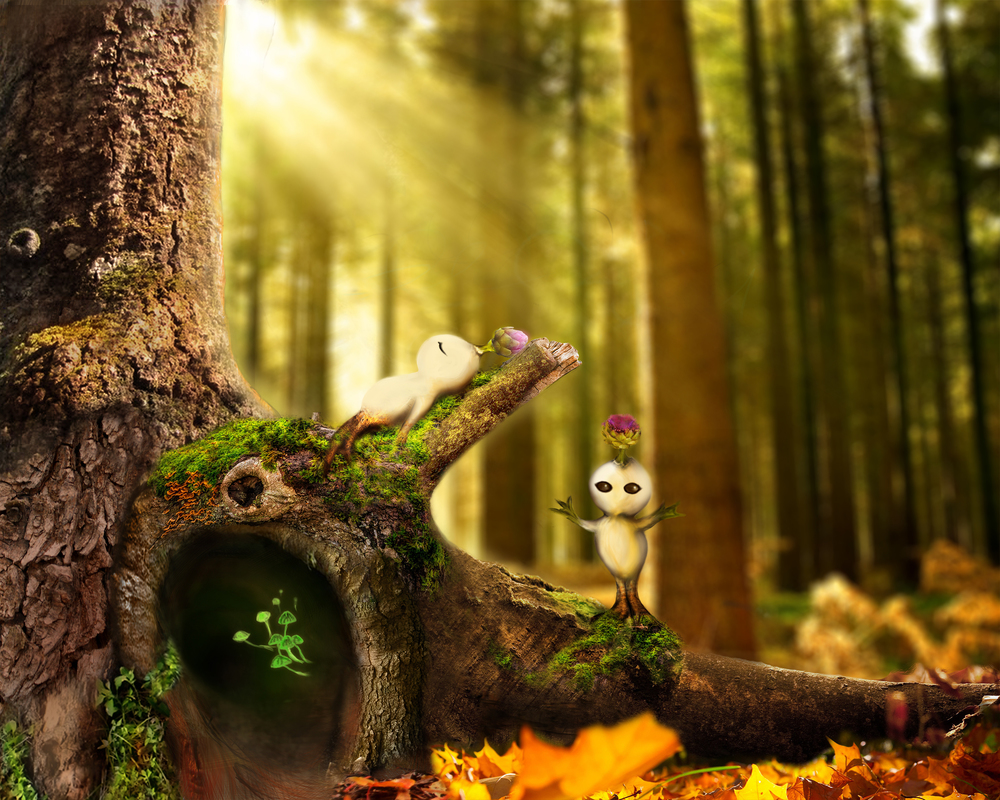 treewb3main1.jpg