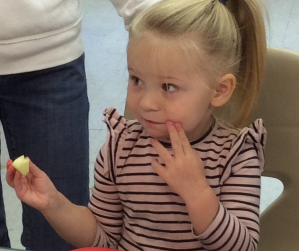 Lila, from Sturbridge, has discerning taste as she decides her favorite apple out of 5 options presented during the Family Foundation 5 STEAM class.