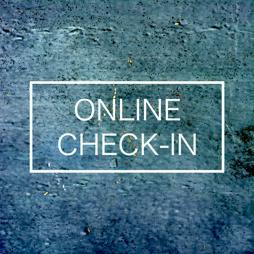 online check in.png