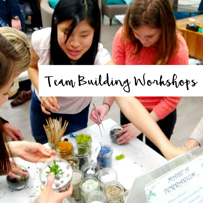 Team Building Workshops succulents terrarium san francisco