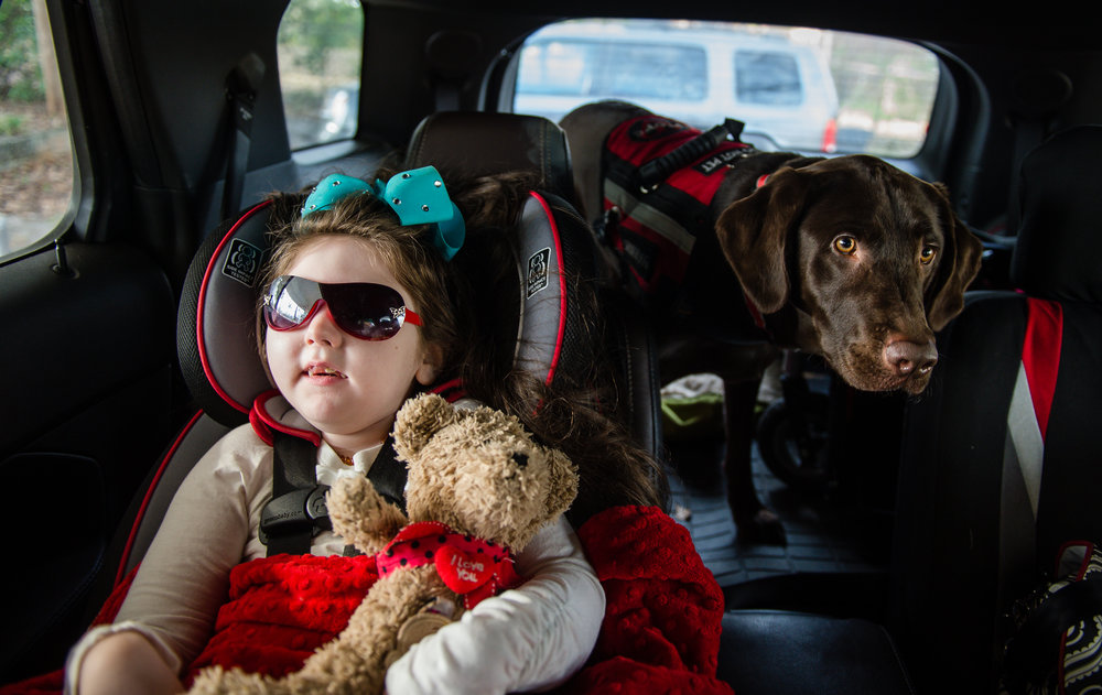 Haleigh and her service dog Kala take a ride to visit their home under construction in Forsyth, Ga.