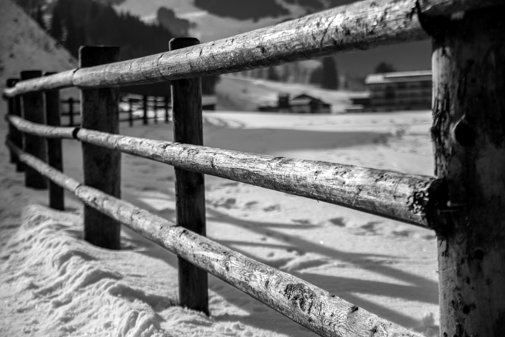austrian fence in snow
