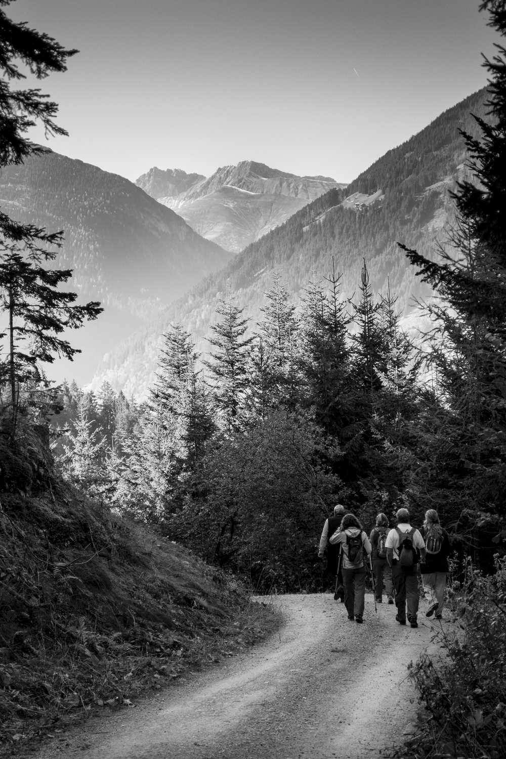 Walking down from the Wiesenhof back down to Mayrhofen