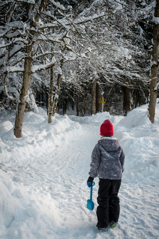 winter walk 19_03.jpg