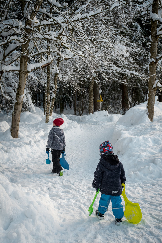 winter walk 19_04.jpg