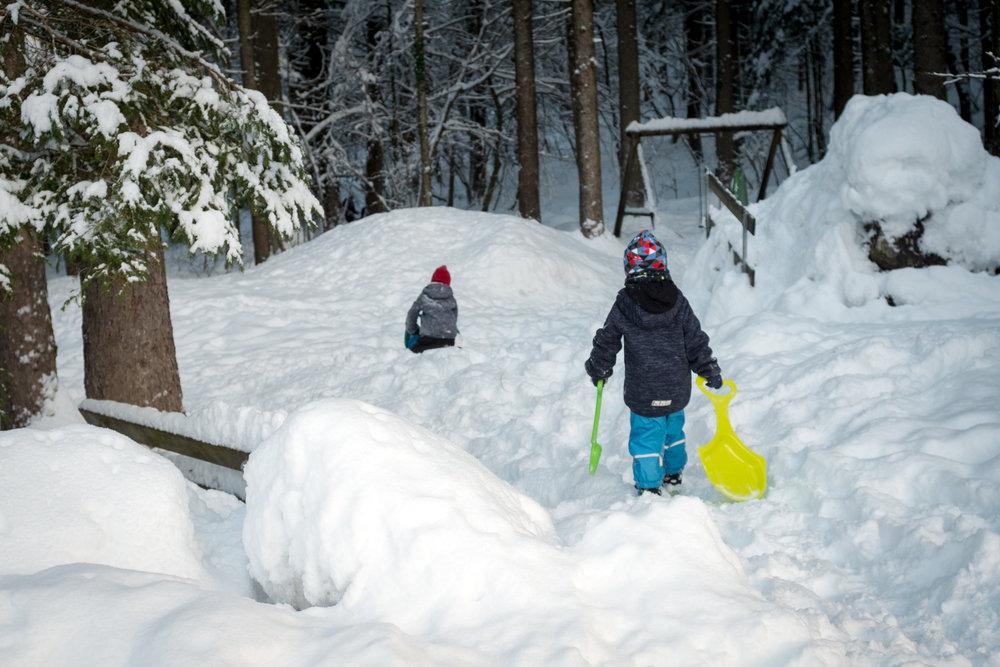winter walk 19_05.jpg