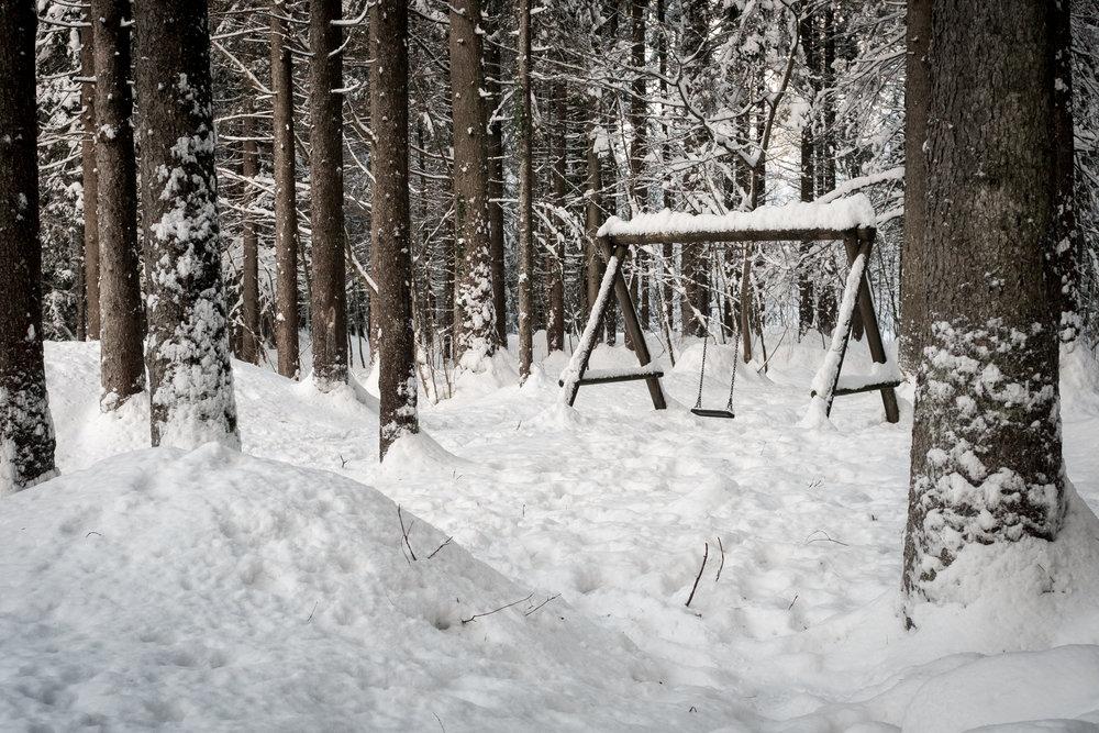 winter walk 19_07.jpg