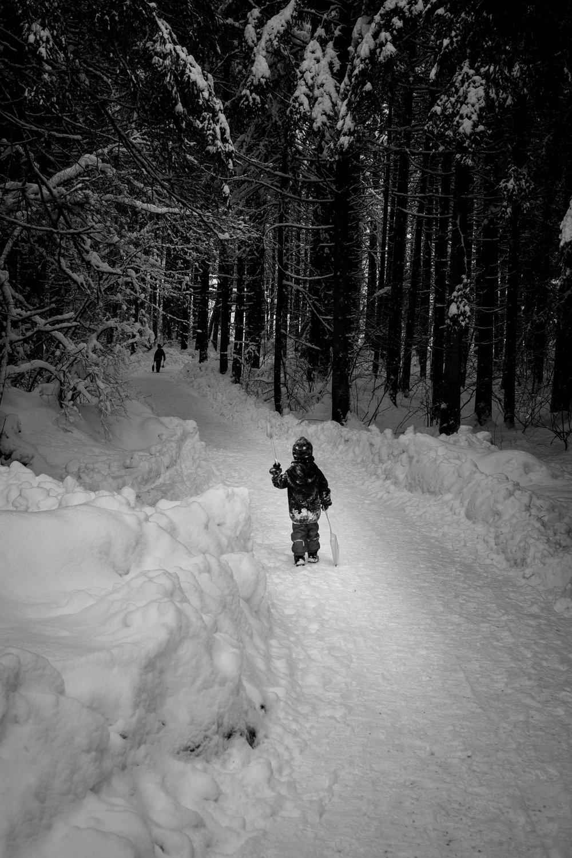 winter walk 19_09.jpg