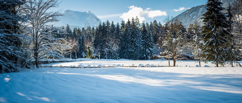 winter walk 19_08.jpg