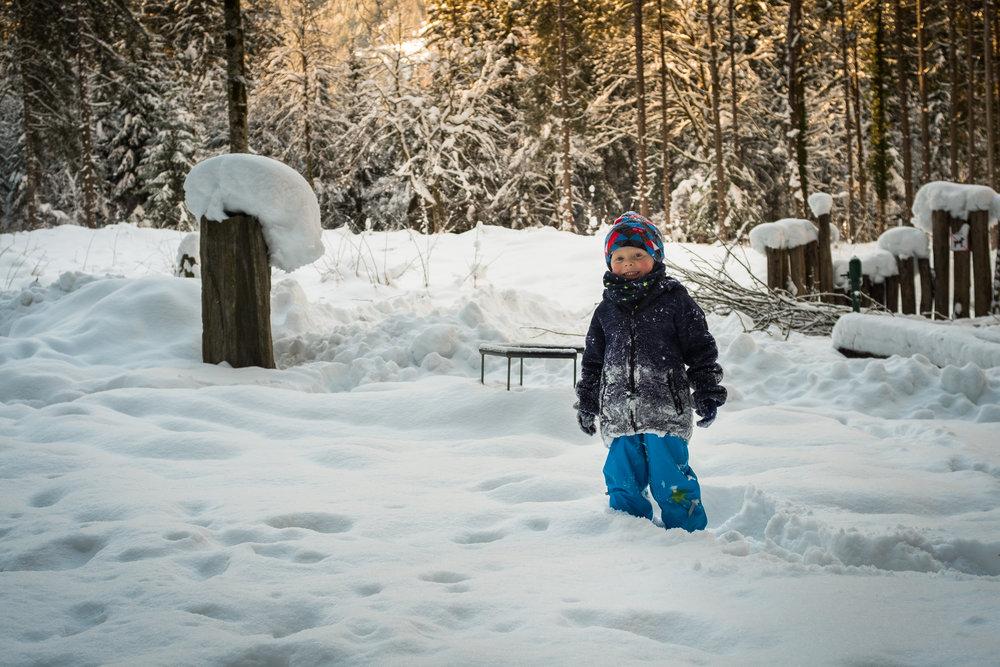 winter walk 19_13.jpg