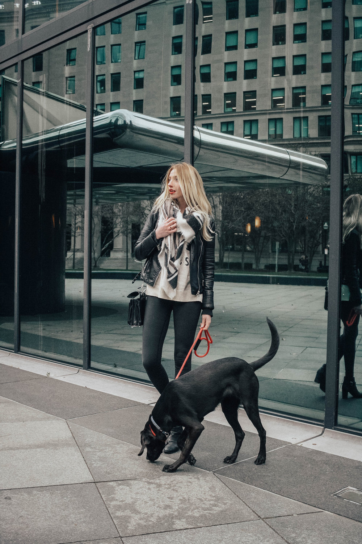 Blogger Moto Jacket