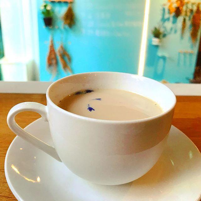 熱愛奶茶的我們,夢想是開一間奶茶專門屋🏡 矢車菊藍伯爵夫人鍋煮奶茶💙  #forrocafe #奶茶專門屋 #伯爵夫人奶茶 #鍋煮奶茶 #台中咖啡店 #台中奶茶