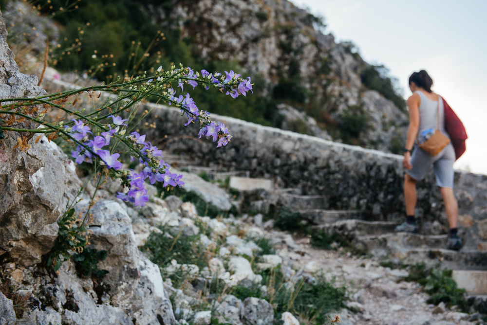 Purple flowers sprout out of the walls as we hike up the 1,350 steps to the top.