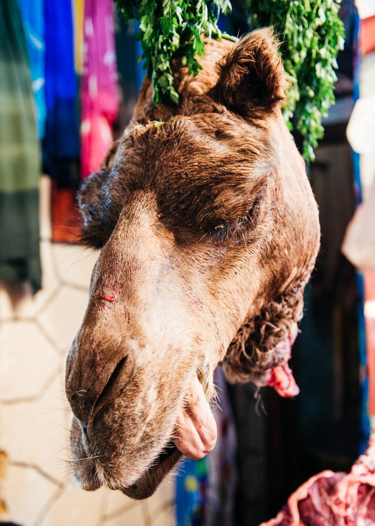 Camel head stew anyone?