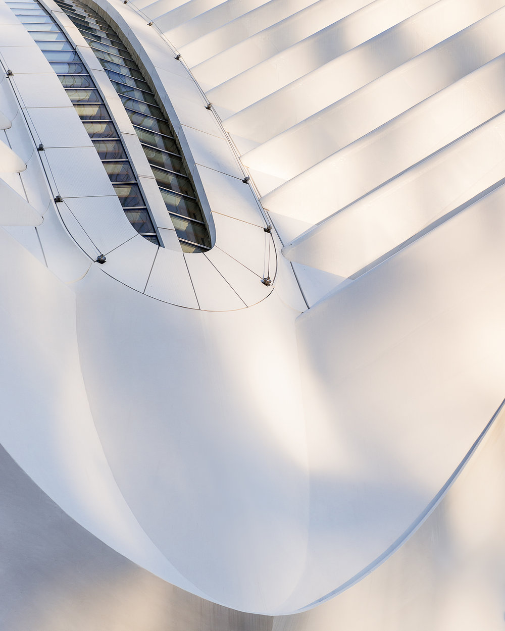 Oculus roof line