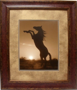 REARING HORSE $99