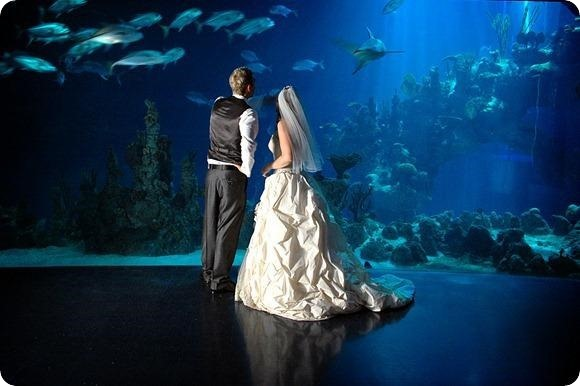 http://www.thedeep.co.uk/weddings