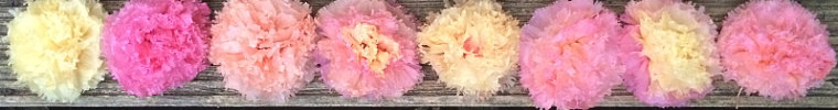 www.etsy.com/uk/shop/pompomblossom