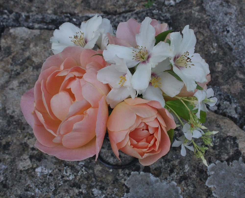 flowers Amamini.jpg