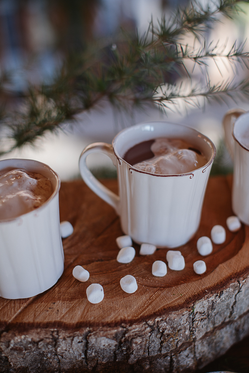 Christmas-Bridal-Brunch-Log-Cabin-Hot-Chocolate-Festive-Shoot-6.jpg