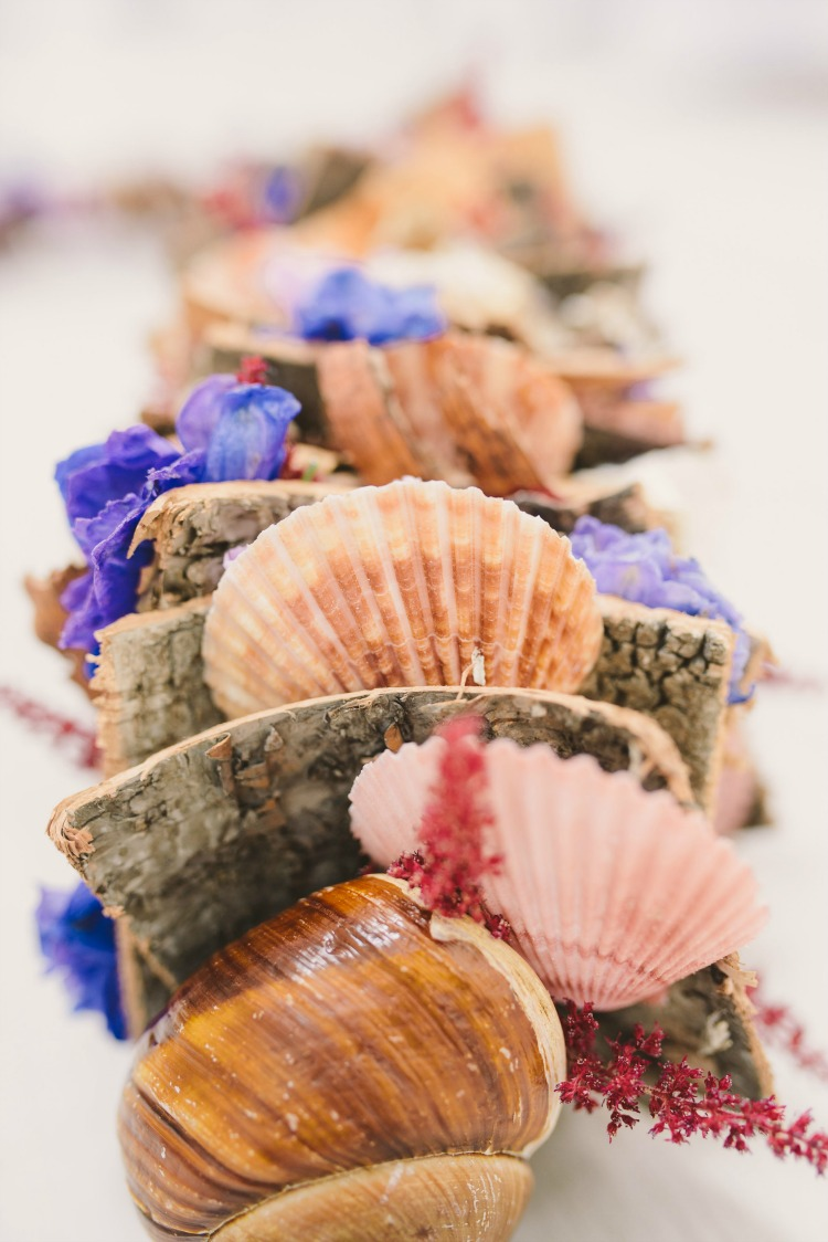 wedding shells.jpg
