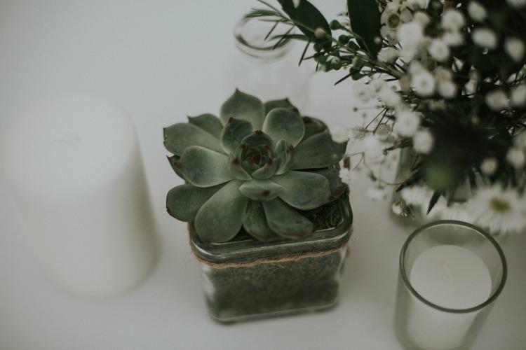 Wedding cactus.jpg