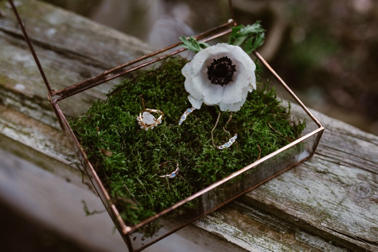Agnes Black Liverpool wedding photographer wedding rings.jpg