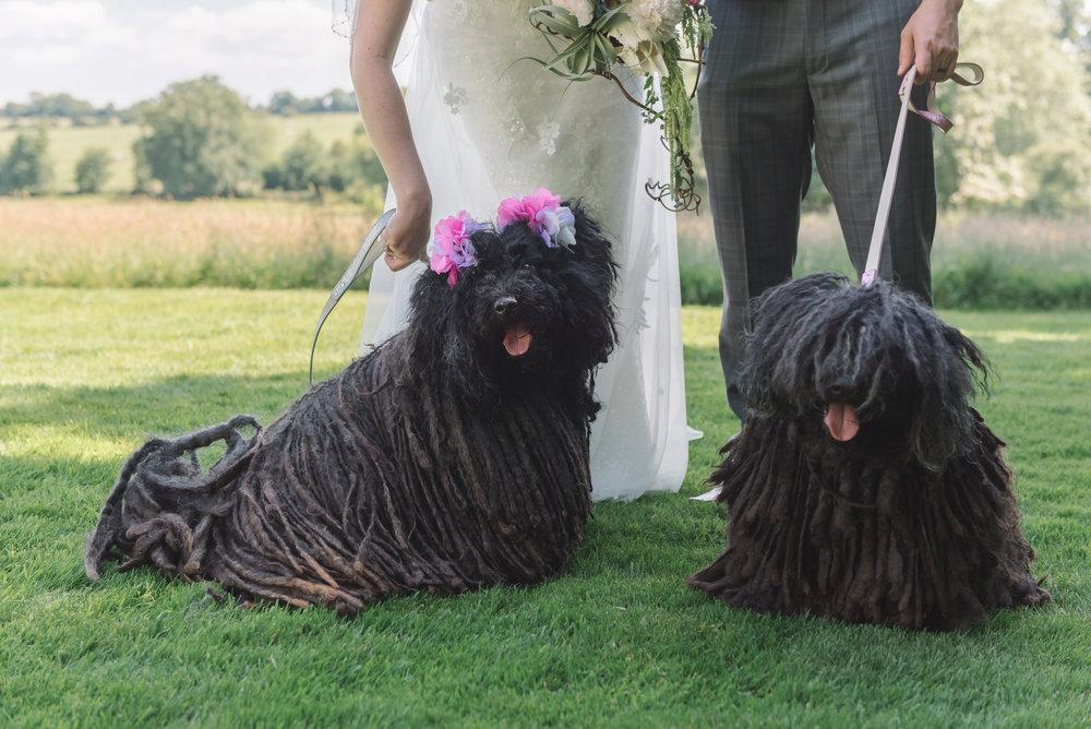 Lauren and Thomas Wedding - 17.06.2017-1323.JPG