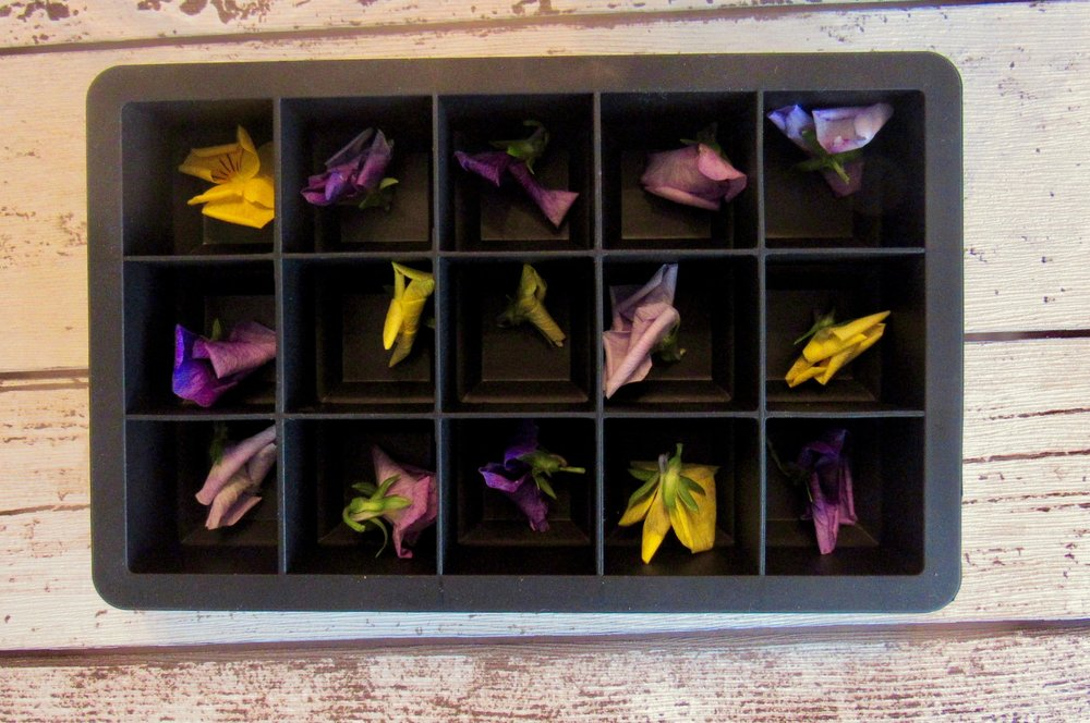 Floral Ice Cubes 4.jpeg