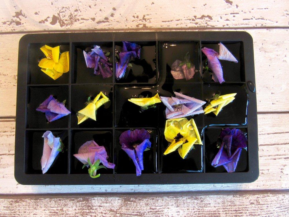 Floral Ice Cubes 5.jpeg