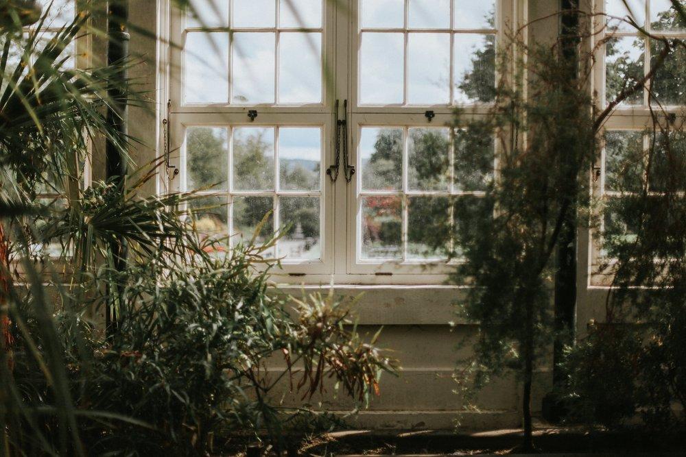 Minimalist Botanical Wedding 21.jpg