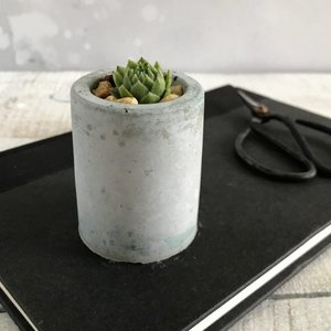 Concrete Succulent Planter  | £5.95