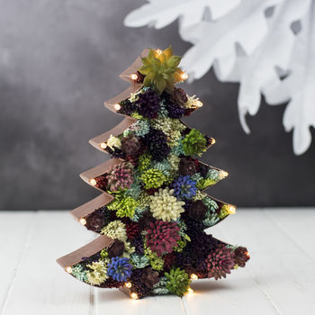 Light Up Succulent Christmas Tree | £40.00