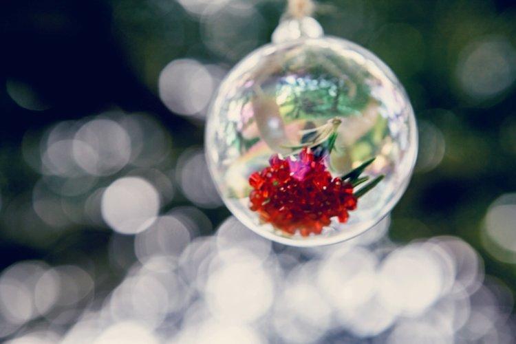 Christmas-wedding-breadsall-priory-d-Elen-Studio-Photography-web-042.jpg