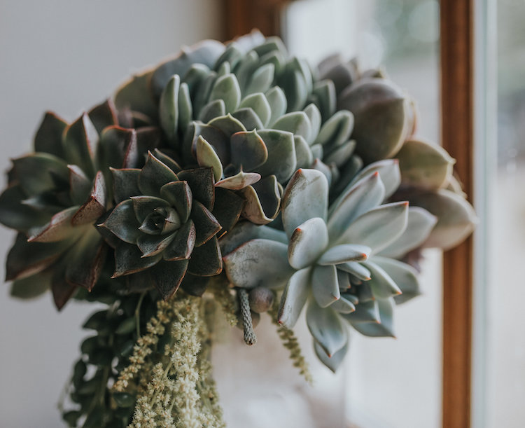And+so+to+Wed+-+All+Bunched+Up+-+The+Succulent+Wedding+Trend3.jpg